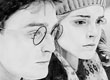 Portrait d\'Harry Potter et Hermione