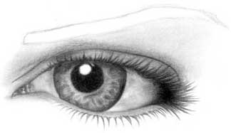 Drawing eye - step 19