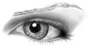 Drawing eye - step 21