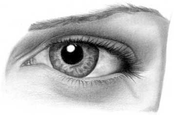 Drawing eye - step 26